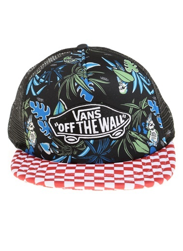 Şapka Vans